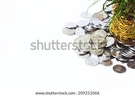 silver coins, basket with growing herbs, conception of rich.