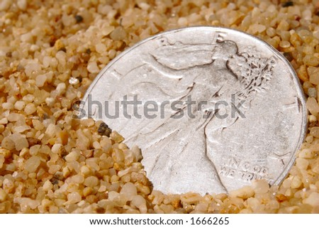 Silver dollar peeks out of the sand inviting the keen eyed beachcomber