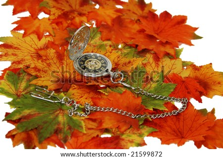 Silver pocket watch with a metal chain on fall colored leaves