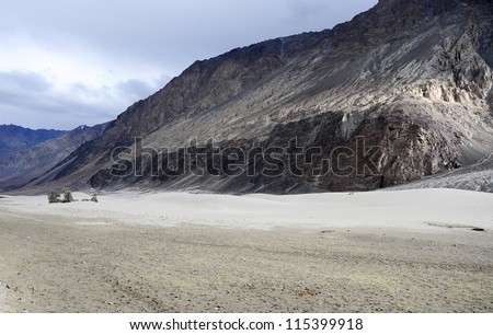 Silver sand dunes at Nubra Valley, Ladakh, India