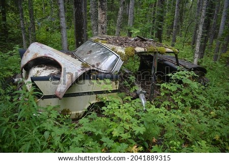 Simca Vedette in a forest. Stock fotó ©