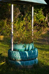 simple design of flower pots from used rubber car tires in city parks. recycle concept from used rubber car