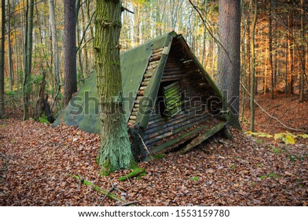 Simple forest shelter. Old forest shelter. Wooden shelter. #1553159780