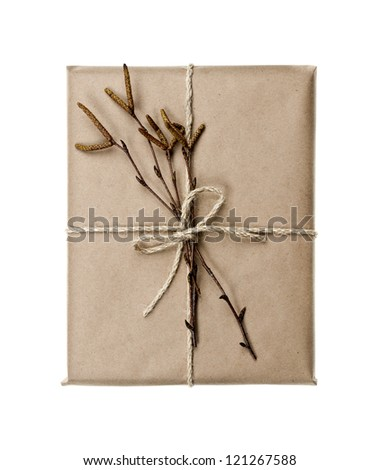 Simple gift package in brown paper decorated with birth branches isolated on white background