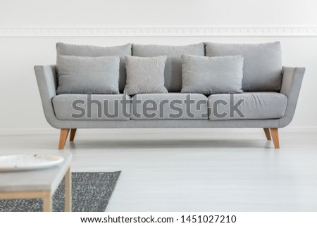 Simple grey couch in bright scandinavian living room interior #1451027210