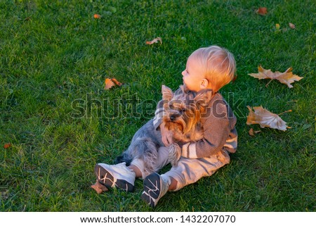 Simple happiness. Small baby toddler on sunny autumn day walk with dog. Happy childhood. Sweet childhood memories. Child play with yorkshire terrier dog. Toddler boy enjoy autumn with dog friend.