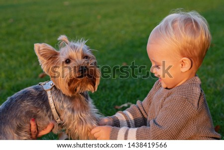 Simple happiness. Toddler boy enjoy autumn with dog friend. Small baby toddler on sunny autumn day walk with dog. Happy childhood. Sweet childhood memories. Child play with yorkshire terrier dog.