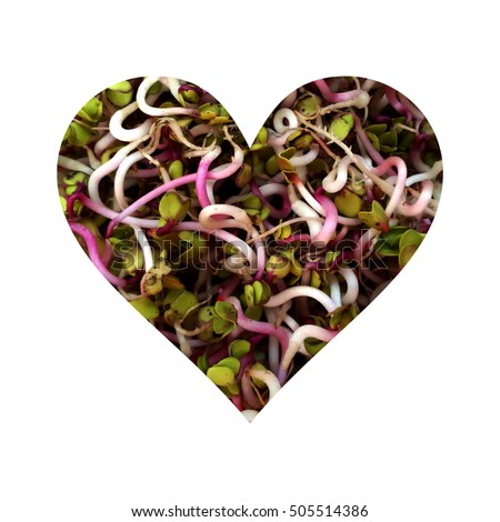 Simple heart filled with radish germs texture #505514386