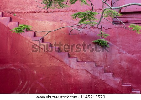 Simple of Stairs, Pink wall with Ladder background, Retro style background, Painting art on building wall, copy space