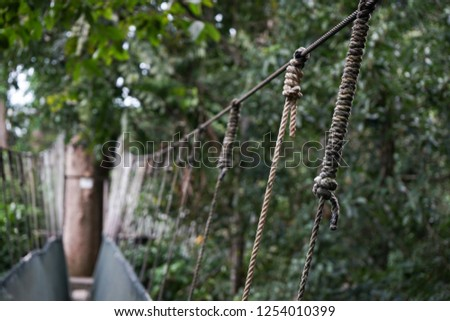 Simple suspension bridge in forest trees. selective focus for rope hanging on bridge  #1254010399