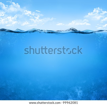 simple underwater scene with sea plants