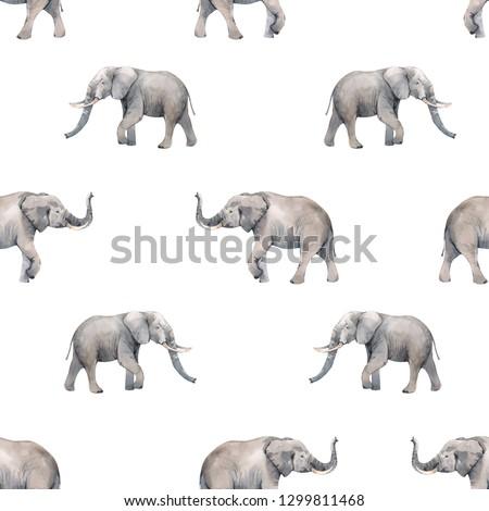 Simple watercolor pattern elephant