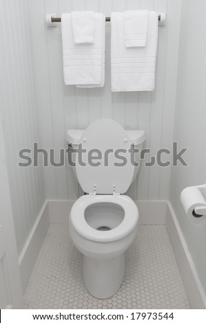 Simple white bathroom toilet lid up