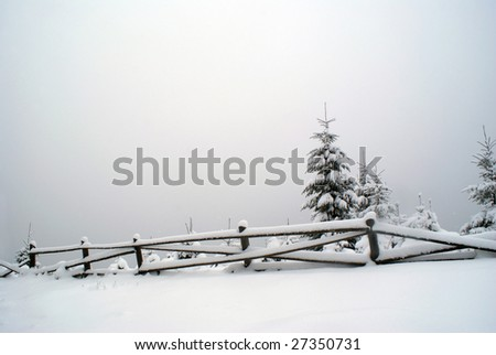 simple winter landscape on cloudy day covered in snow