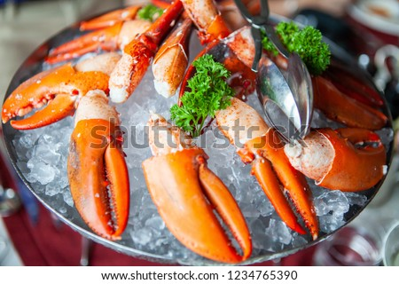 Simple yet delicious. Claws of fresh and tasty bright red poached Maine Lobster or American lobster seafood on ice. Contain cholesterol, but low in saturated fat and also have omega-3 fatty acid. #1234765390