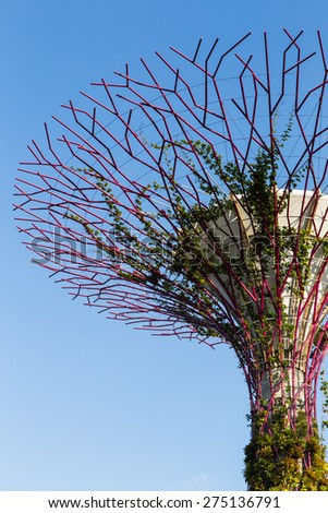 SINGAPORE - FEBRUARY 28, 2015: Close-up Supertree Groove at Garden by the Bay. Garden by the Bay is one of the most famous tourist attraction in Singapore.