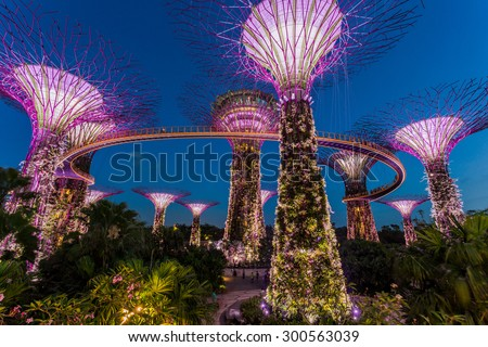 SINGAPORE - FEBRUARY 28, 2015: Sunset scene of the Supertree Groove at Garden by the Bay. Garden by the Bay is one of the most famous tourist attraction in Singapore.