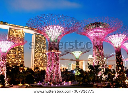 SINGAPORE - JANUARY 22: Night view of Supertree Grove at Gardens near Marina Bay January 22, 2014 in Singapore. Gardens by Bay was crowned World Building of Year at World Architecture Festival 2012