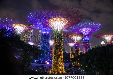 Singapore - January 27, 2018: Night view of Supertree Grove in the Garden by the Bay in Singapore. #1079001383