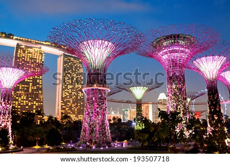 SINGAPORE - JANUARY 22: Night view of The Supertree Grove at Gardens near Marina Bay January 22, 2014,  Singapore. Gardens by Bay was crowned World Building of Year at World Architecture Festival 2012
