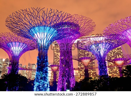 SINGAPORE - JANUARY 22: Night view of The Supertree Grove at Gardens near Marina Bay January 22, 2014. Singapore. Gardens by Bay was crowned World Building of Year at World Architecture Festival 2012