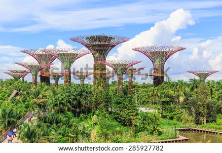 SINGAPORE, JUNE ,9 : Garden by the Bays at Singapore near attraction like Marina  Bays.The great place for tourists are going to see nature.SINGAPORE JUNE ,9 2015