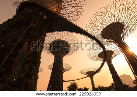SINGAPORE - MARCH 09: Silhouette of Gardens by the Bay on March 09, 2014 in Singapore. Gardens by the Bay was crowned World Building of the Year at the World Architecture Festival 2012