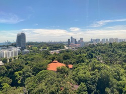 Singapore Skyline (Nature and City)