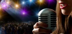 Singer at the concert