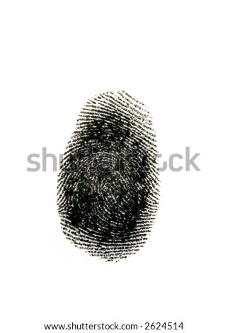 Single black fingerprint on white