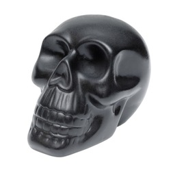 Single black human skull, plastic model, souvenir, isolated on white background