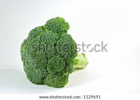 Single broccoli head isolated on white