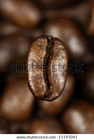 single coffee bean on a background of blurred coffee beans #11195041