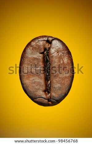 Single coffee bean on yellow background. Macro shot - stock photo