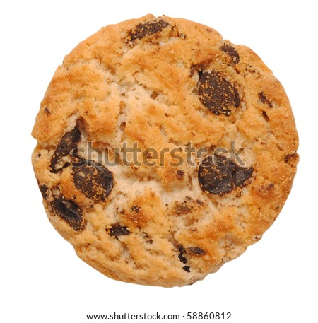 single cookie isolated on white