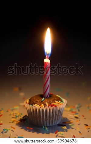 Single cupcake with sprinkles and candle