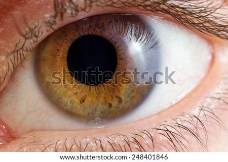 Single eye close up