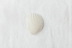 Single Flat Semi Circle Pure White Sea Shell on Linen Fabric Background. Minimalist Modern Styled Stock Photo for Social Media Blog Product Promotion.Template for Poster Placeholder Banner. Copy Space
