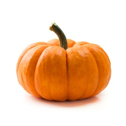 Single fresh orange miniature pumpkin isolated on white background