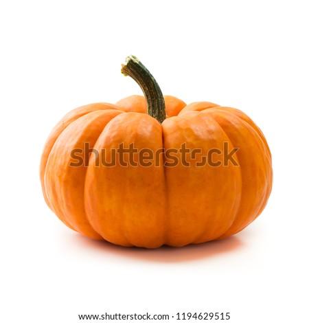Single fresh orange miniature pumpkin isolated on white background