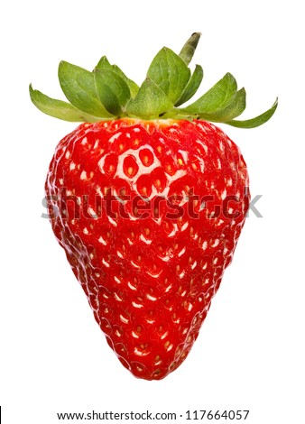 single fresh red strawberry isolated on white background - stock photo