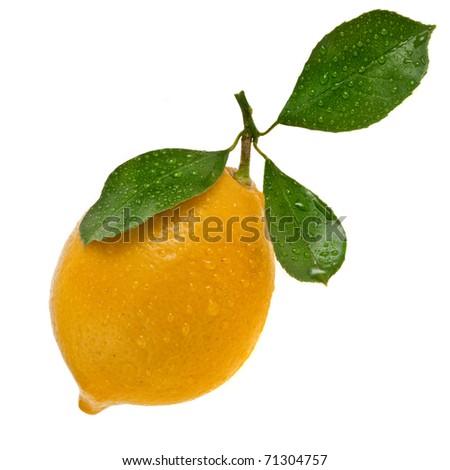 Single Fresh Ripe Lemon Fruit Icon isolated on a white background