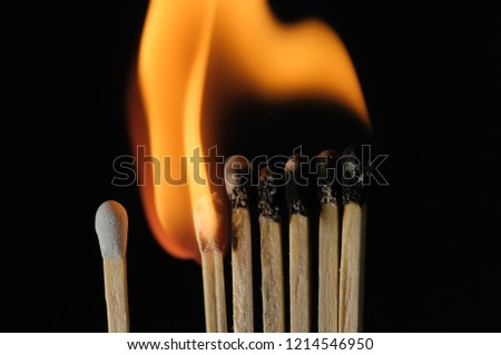Single matchstick unlit near a burning group of matchsticks, concept of individual versus collective