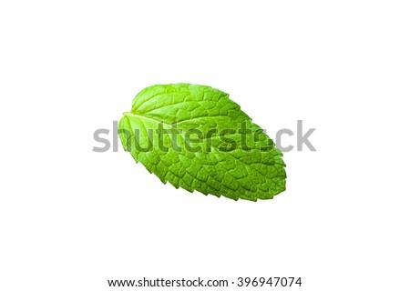Single mint leaf isolated on white background #396947074