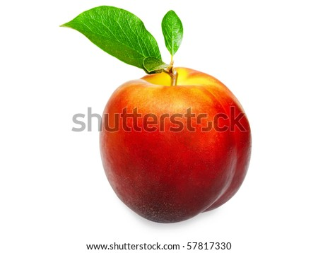 single nectarine with green leaves over white background