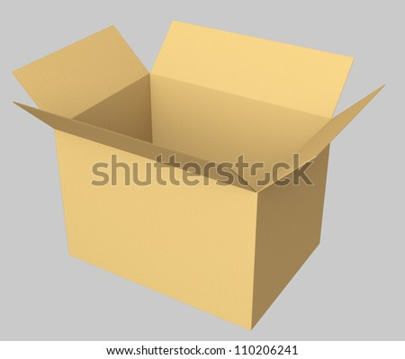 single opened cardboard box