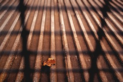 Single orange golden autumn leaf on a rusty copper iron background with perpective lines behind bars