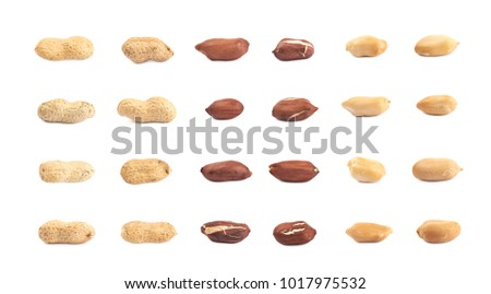 Single peanut in a shell isolated over the white background, set of multiple different foreshortenings