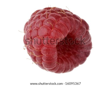 Single raspberry fruit isolated against white background