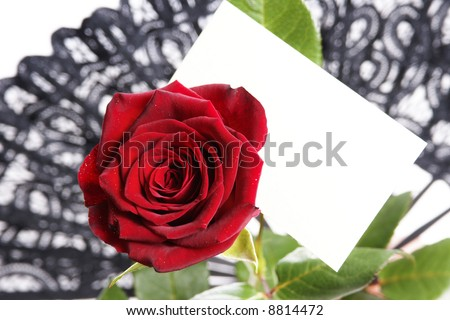 Single red rose with love note paper. Put your message on it!